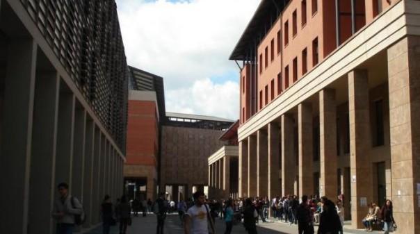 Università degli studi di Firenze, Polo delle Scienze Sociali
