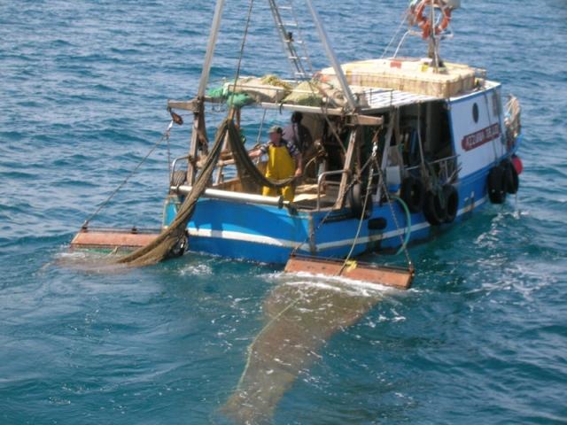 Un peschereccio della flotta toscana