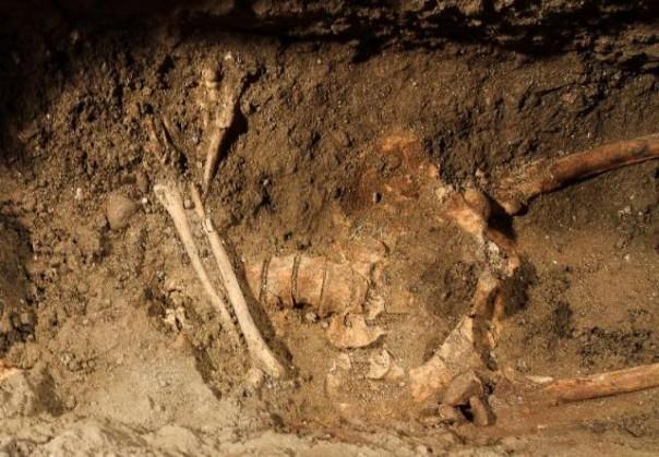 Uno degli scheletri trovati nel Convento di Sant'Orsola a Firenze