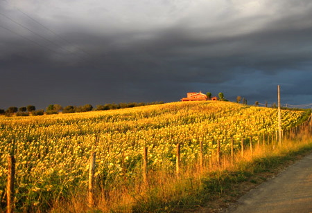 Meteo, sole e pioggia