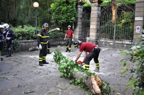 Ramo d'albero caduto sul Viale Michelangelo