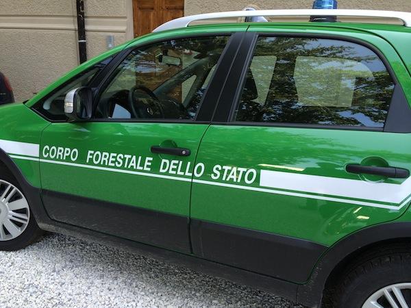 Un'auto del Corpo Forestale dello Stato