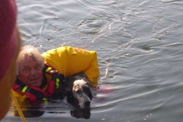 Il cane riportato a riva dopo il salvataggio