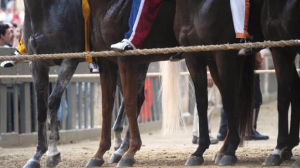Palio di Siena del 2 luglio 2015, vince la Torre