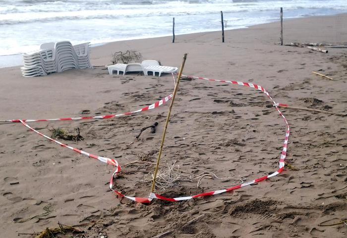 Il luogo dove è stato trovato il cadavere della neonata sulla spiaggia di Campolongo di Eboli (Salerno), 05 novembre 2013. ANSA/LUIGI PEPE
