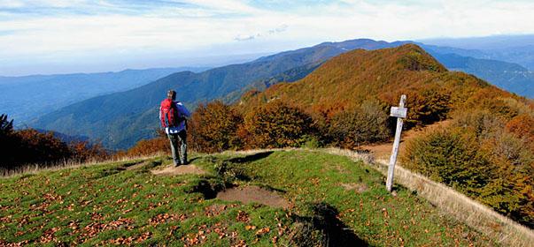 parco-nazionale-foreste-casentinesi