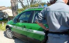 Pattuglia del Corpo Forestale dello Stato