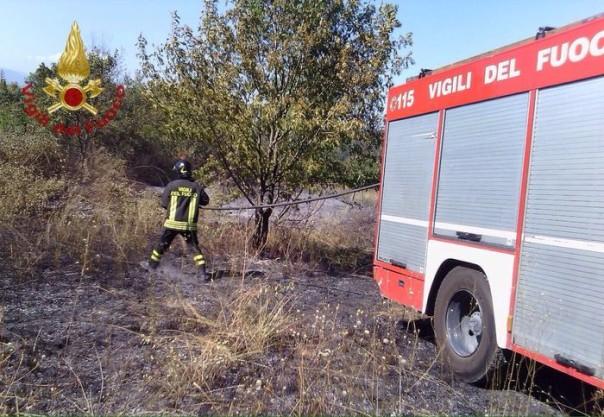 Incendi in Toscana, vigili del fuoco