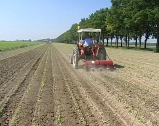 Agricoltura coltivazioni terreni campagna trattore
