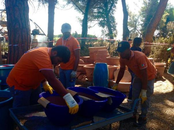 Incendi: Migranti a lavoro in vivaio a Principina