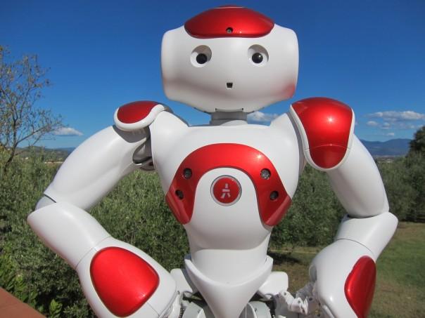 Il robot Nao