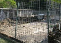 MALTEMPO: CANILI DISTRUTTI, CORSA CONTRO TEMPO PER SALVARE ANIMALI