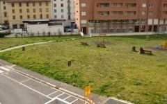 L'area verde di via Schiff al centro dell'attenzione dei cittadini della zona