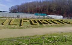 L'ingresso del Forteto a Vicchio di Mugello