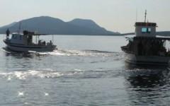 Livorno: revocato il divieto di pesca ai ricci di mare alla Meloria e a Antignano