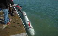 Arriva il robot per la tutela archeologica sui fondali marini