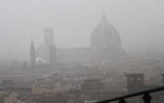 Nubifragio a Firenze, fulmine colpisce un albero della clinica Monna Tessa a Careggi