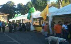 Expo rurale edizione 2013