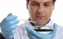 Staminali, dalla Toscana uno studio sul sangue del cordone ombelicale