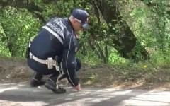 Gli accertamenti svolti dalla polizia municipale di Arezzo