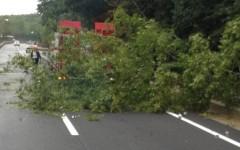 Maltempo: alberi caduti sulla ferrovia Viareggio-Luca, treni in ritardo. E code per incidente sulla Fi.Pi.Li