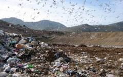 Cassazione, multe se non si riducono gli odori dei rifiuti in discarica