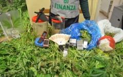 La droga e i contanti sequestrati dalla Gdf