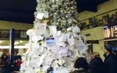 I centinaia di messaggi appesi sull'albero fiorentino