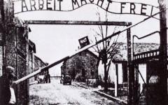 Il campo di sterminio di Auschwitz