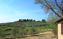 Toscana, anche Coldiretti rivela un miracolo: 32mila nuovi posti di lavoro in agricoltura