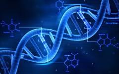 Kodama, il nuovo algoritmo «fiorentino» per combattere i tumori