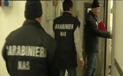 Arezzo, i Nas sequestrano 30 tonnellate di pesce venduto come fresco (Video)