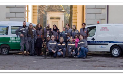 Emergenza animali: a Firenze arriva l'ambulanza veterinaria