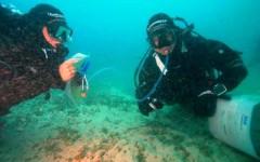 Isole Formiche di Grosseto: morti tre sub di Perugia durante l'immersione. Un quarto è gravissimo