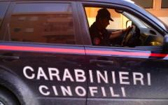 Prato: cani antidroga dei carabinieri fanno arrestare due spacciatori a Montemurlo