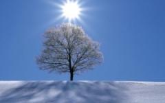 Il sole a inizio febbraio non vuol dire che l'inverno è finito