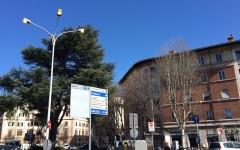 Firenze, lampioni accesi in pieno giorno. Spreco? No, test dopo la bufera di vento