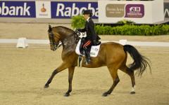 Equitazione: è grave dopo una caduta da cavallo Valentina Truppa, campionessa olimpica e carabiniere scelto