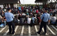 Immigrazione: l'Ue propone di redistribuire 120.000 profughi approdati in Italia e Grecia. E  l'Ocse prevede un milione di arrivi in Europa