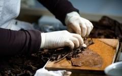 Manifatture sigaro toscano al Vinitaly: la dimostrazione del lavoro delle sigaraie di Lucca