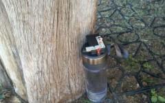 Pisa: falso allarme bomba nei pressi della Torre. Bottiglia con liquido collegata a led