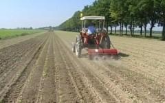 Renzi: «L'Irpef agricola sarà cancellata dal 2017». Con la legge di stabilità