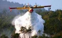 Grosseto: incendio in pineta a Principina a mare. In azione quattro elicotteri e un canadair della Regione