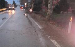 Capannori (Lu): 65enne muore travolto da un'auto all'uscita dell'autostrada