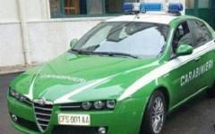 Sicurezza: i carabinieri - forestali saranno dotati di auto verdi riciclate, ma con targa e numero d'emergenza vecchio regime