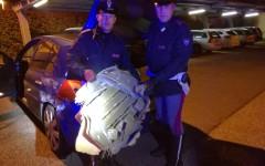Arezzo: auto sospetta inseguita e bloccata dalla Polstrada. All'interno 2 q.li di hashish