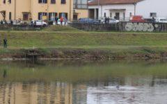 Pisa: delfino che nuota in Arno, evento rarissimo. Lo attesta Arpat