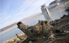 Barberino di Mugello (Fi): chiuso per 15 giorni un locale sul lago di Bilancino