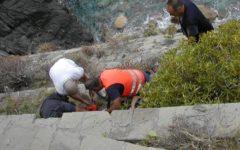 Monterosso: 23enne senese muore precipitando da un sentiero alle Cinque Terre