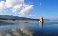 Laguna di Orbetello: rischio morìa di pesci. Acqua senza ossigeno. La Regione crea zone-rifugio
